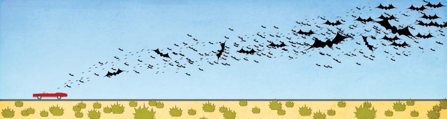 Fear and Loathing Bats-01